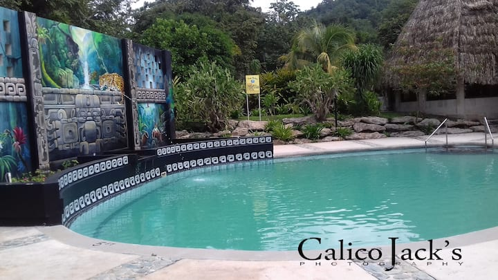 Modern Jungle Villa