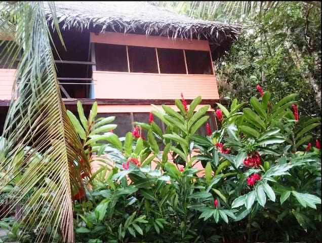 Posada Manati - Secluded Guest House on the river - Río Dulce