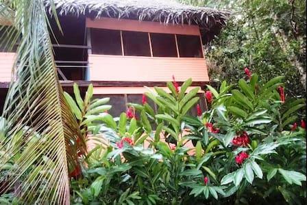 Posada Manati - private guest house & cabañas - Guesthouse
