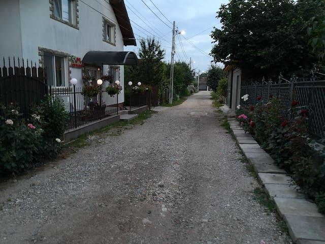 """Apartment in vila """"Casa cu flori"""""""