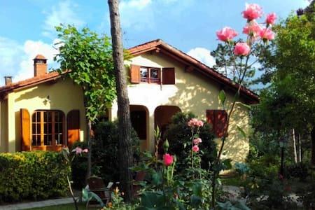 Double room in Vicchio. - Vicchio - Villa