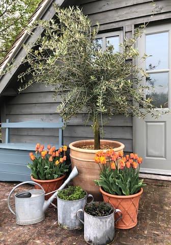 The Garden Studio in the countryside near Overton