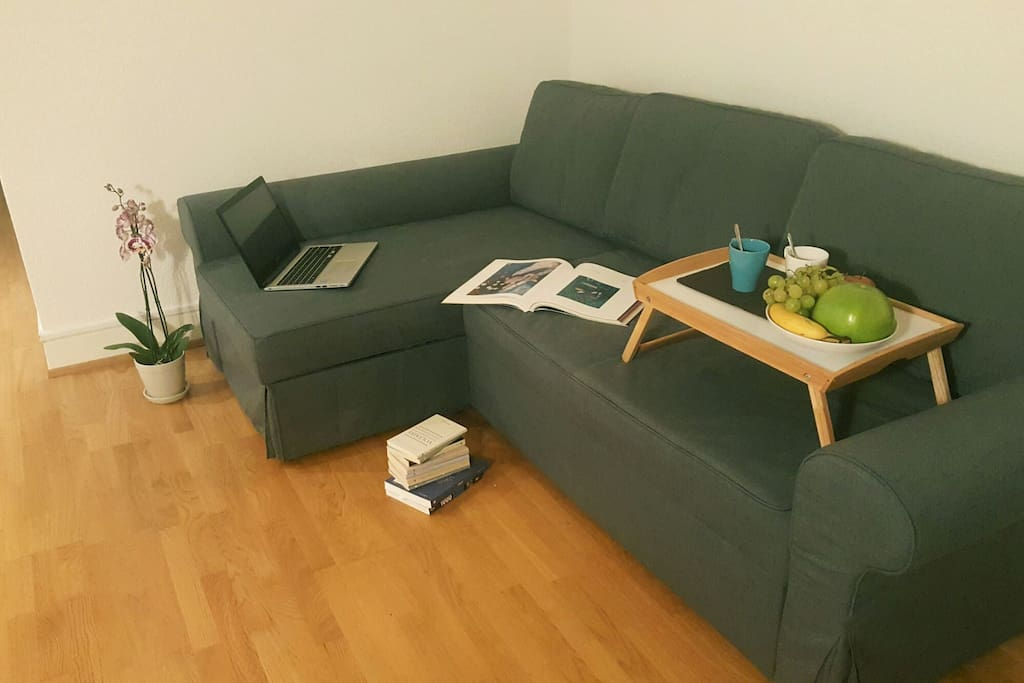 Living room with brand new large sofa bed