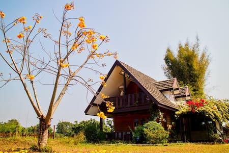 Cozycomo Chiang-Dao