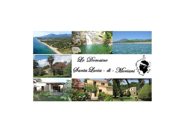 Le Domaine : villa privative T4 - Santa-Lucia-di-Moriani - Villa
