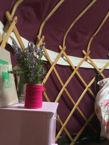 Deerheart Baby Yurt