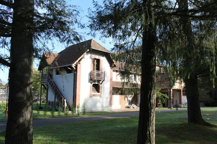Nice House in a 6ha property. - Neuvy-sur-Barangeon - House