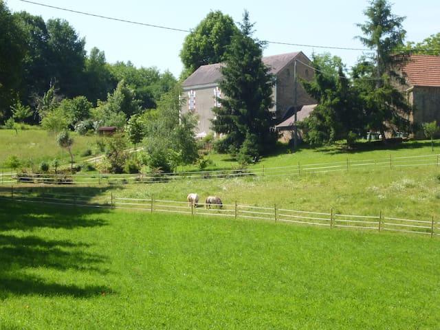 La ferme vue du chemin d'accès: la maison principale avec le poulailler attenant et la grange Au premier plan, Babou et Grisou les deux poneys A gauche du chemin, le coin jeux pour les enfants