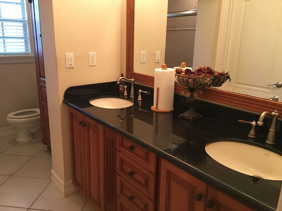 Dual sinks and large mirror
