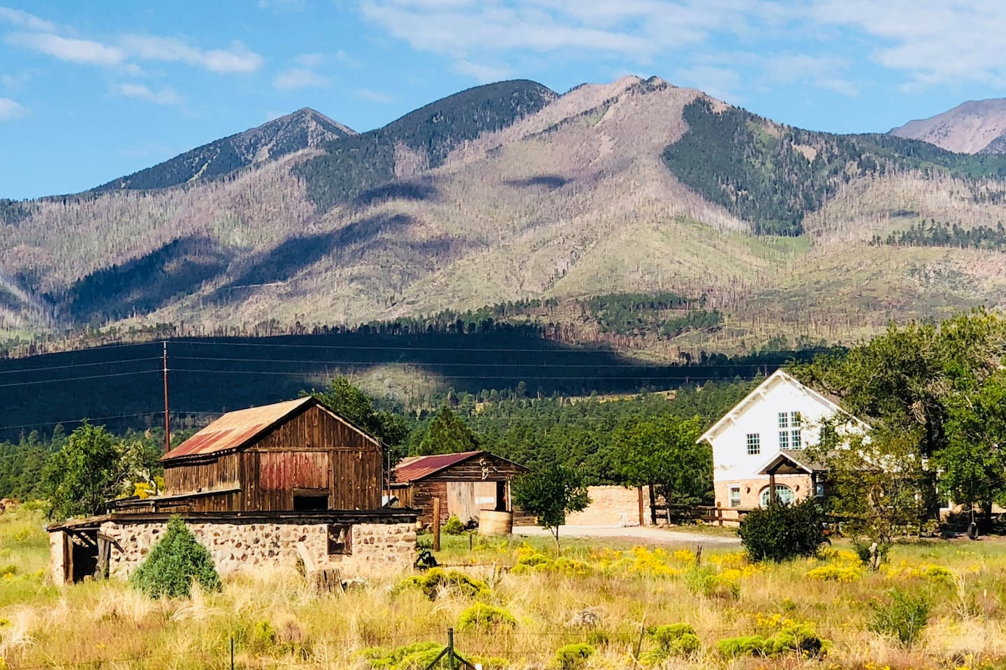 25 acres backing up to the San Francisco Peaks!
