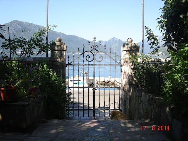 exotic,sunny,peaceful,friendly - Kotor - Apartamento