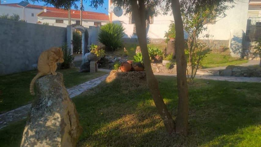 Jardim de exterior