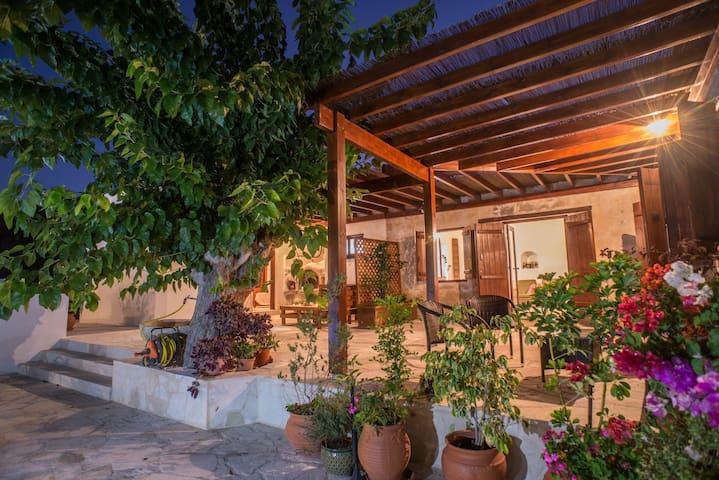 Chloe's House - Backyard Studio