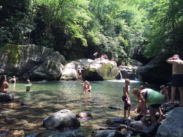 Swimming hole in the Smokies. Free access round trip 3 mile hike. Midnight hole off waterville exit ask us how to find!