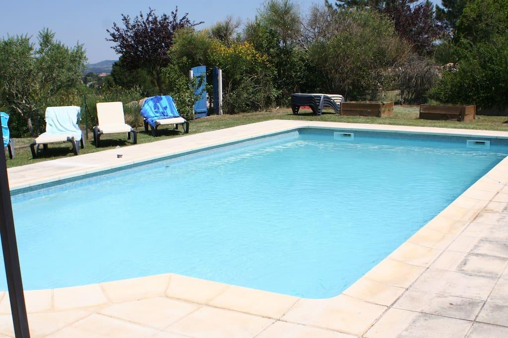 Generously sized pool