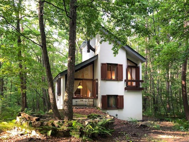 Karuizawa House. Midcentury Design, Pure Nature