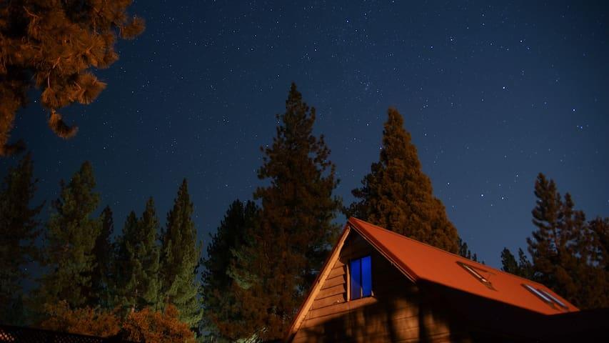 Al Tahoe Bear Den Hidden Tahoe Gem Weekend Special