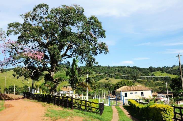 Fazenda espetacular em Minas Gerais com WIFI veloz