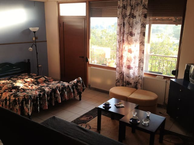 Comfy studio with beautiful view..! - Giànnina