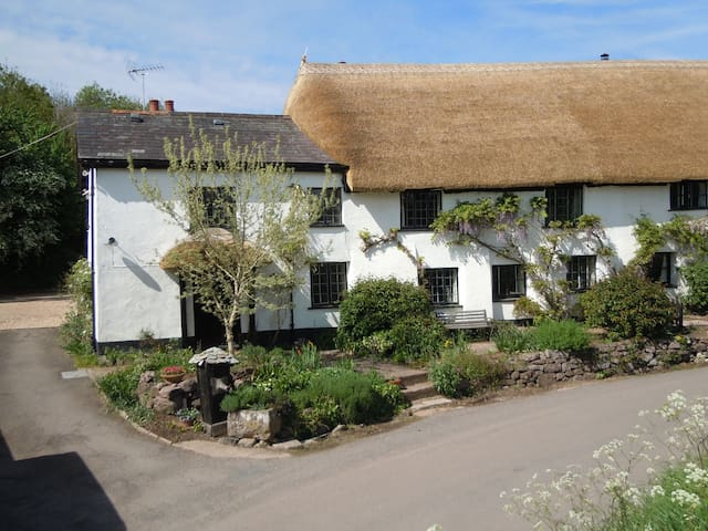 peaceful, rural b & b near Exeter - Thorverton - Bed & Breakfast