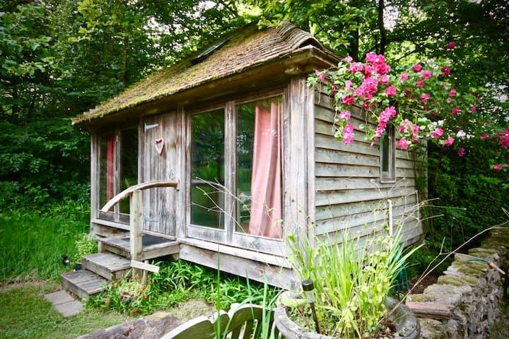 Little cabin in the woods...near Midhurst.