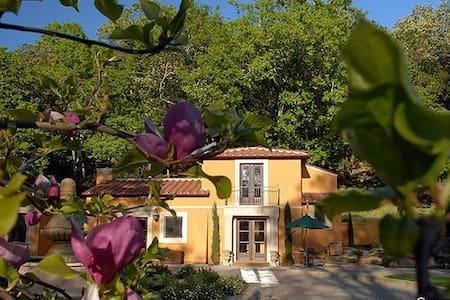 Charming and Quiet Wine Country Cottage - Glen Ellen