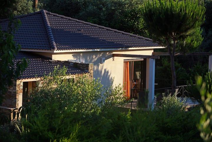Villa l'Albitru, Sisco