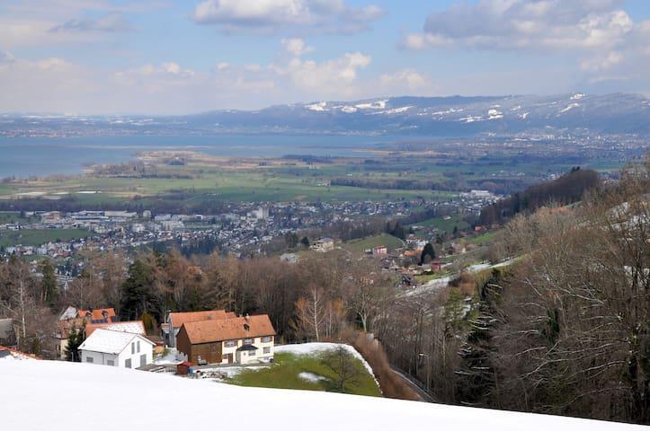 Ferienwohnung mit Bodenseeblick - Wolfhalden
