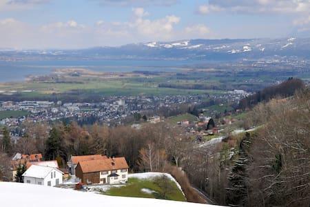 Ferienwohnung mit Bodenseeblick - Wolfhalden - Appartement