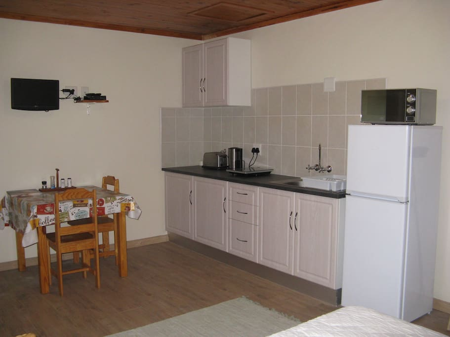 Kitchenette with induction cooker and other extras