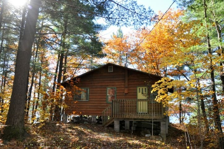 Cottage Rental in High Lake