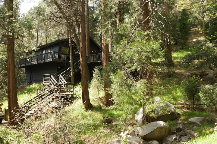 Modern & Cozy Mountain Escape Near LA