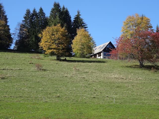 Gite familial en montagne - Saint-Christophe-sur-Guiers - Huis