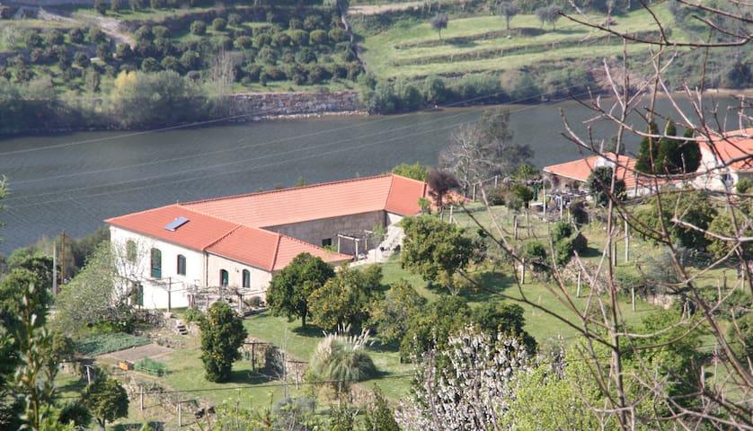Quinta da Vila Espadanedo Cinfaes - Espadanedo - House