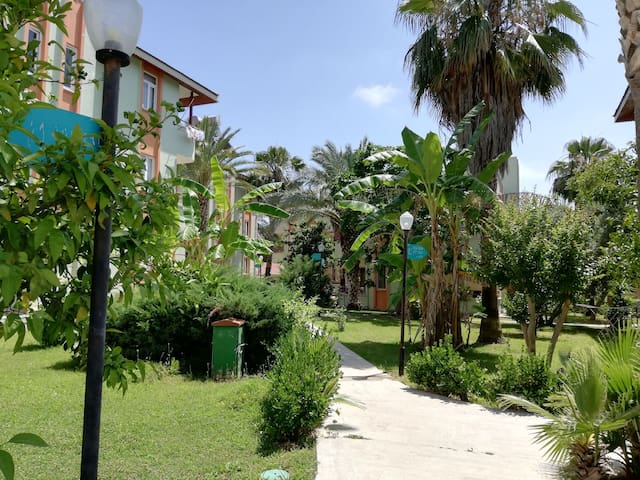 Great location, close to the beach (200m)
