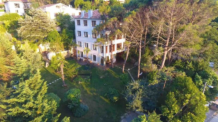 Mansion with Bosphorus View and Gardens
