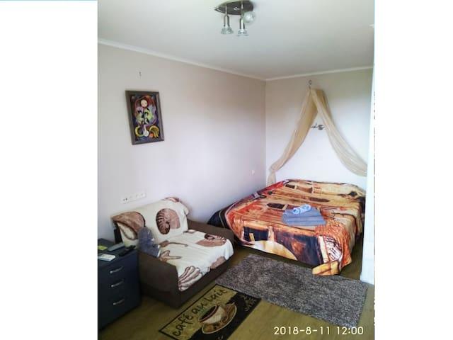 Cozy apartment in Pechersk, Botanical Garden, Kiev