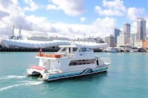 Take the ferry into the city from Gulf Harbour - 3kms away!