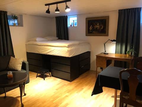 Modern, renovated studio in central Gothenburg