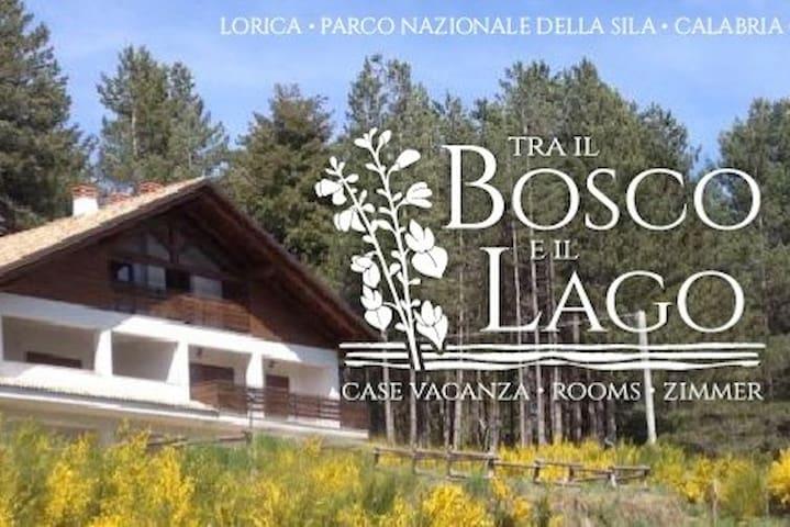 Lorica, tra il bosco e il lago, Casa Ginestra...