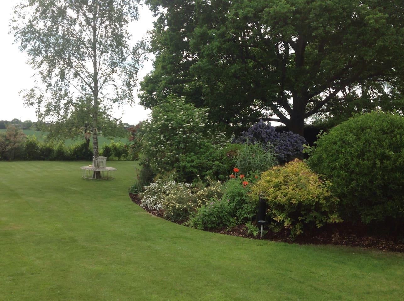Main garden in the summer
