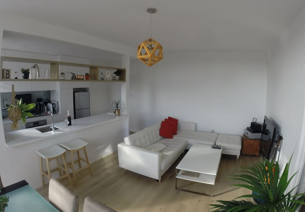 Newly renovated living room and kitchen