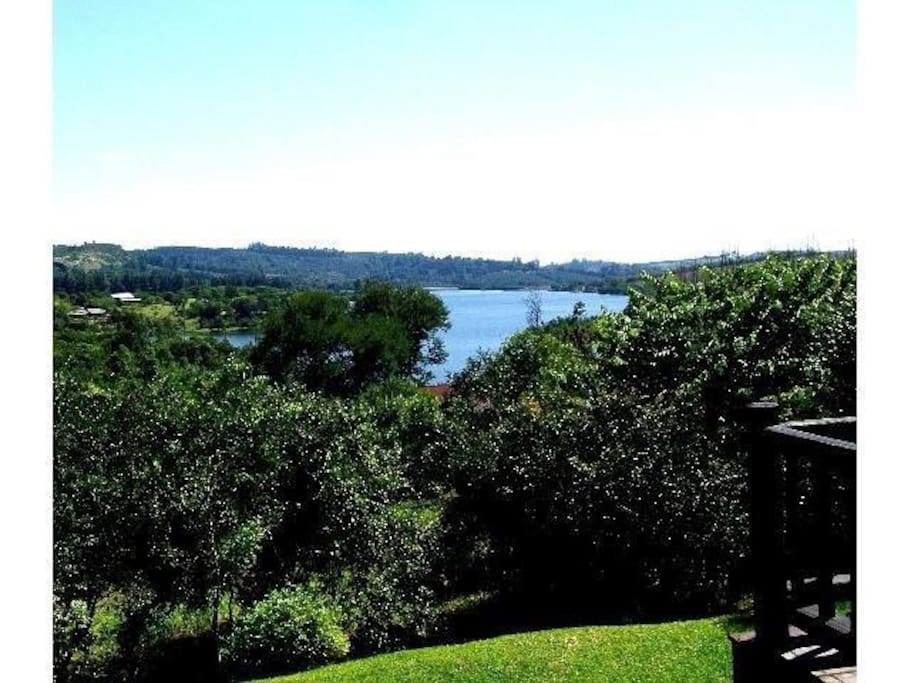 In nature, on the banks of the Da Gama