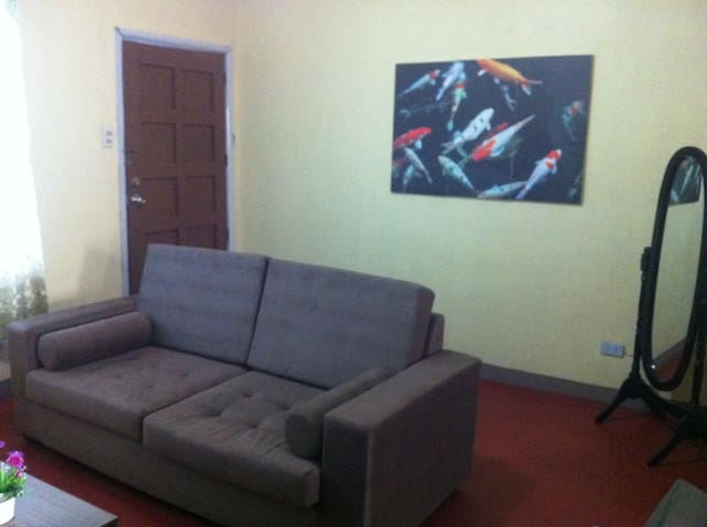 Clean and Nice Fully Furnished Apartment