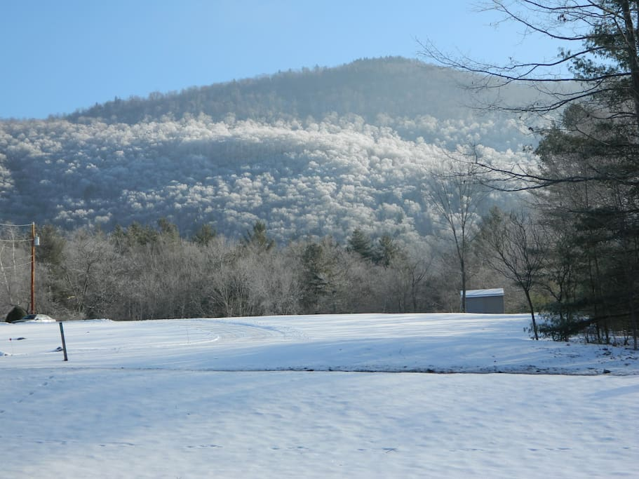 East Mountain.Directly across street. The mountain in 'Rose's Cozy Mountainview' !