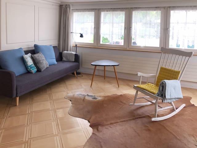 Wohnzimmer mit einfachen Schlafsofa