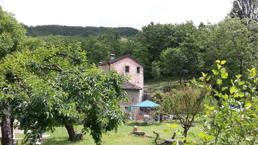 Mulino del frate, az. agricola, ospitalità rurale - Roncobilaccio - House
