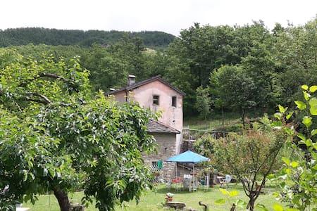 Mulino del frate, az. agricola, ospitalità rurale - Roncobilaccio