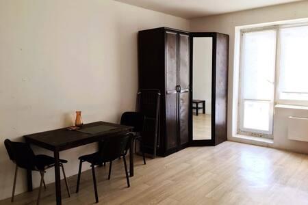 1-комнатная квартира на Проспекте 100-летия