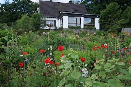 hübsche 45 qm Wohnung in reizvoller Umgebung - Kreuztal - Apartment